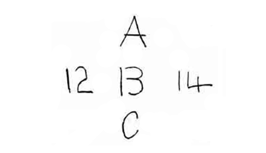 cta perceptual theory